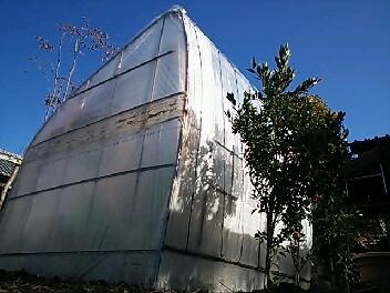 温室&全天候型洗濯場